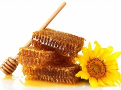 蜂蜜治疗家畜化脓性创伤疗效好
