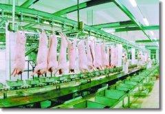 黄山首条生猪自动化屠宰生产线投入使用